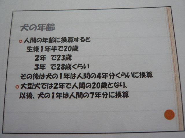 002_20110827112024.jpg