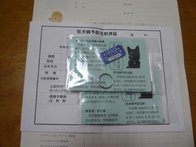 013_20120411110310.jpg