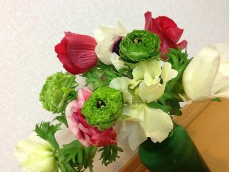 3月16日のお花