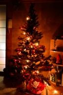 ぷにぷにクリスマスツリー 2013