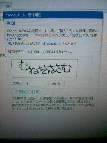 5_20120208141250.jpg