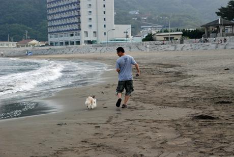 やっぱり砂浜