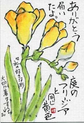 furi-jia 579