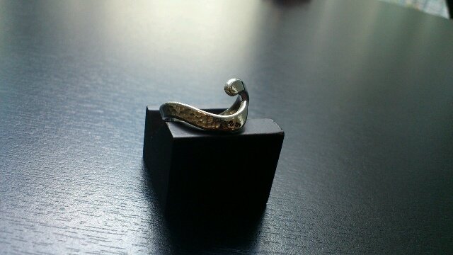 ring ws3