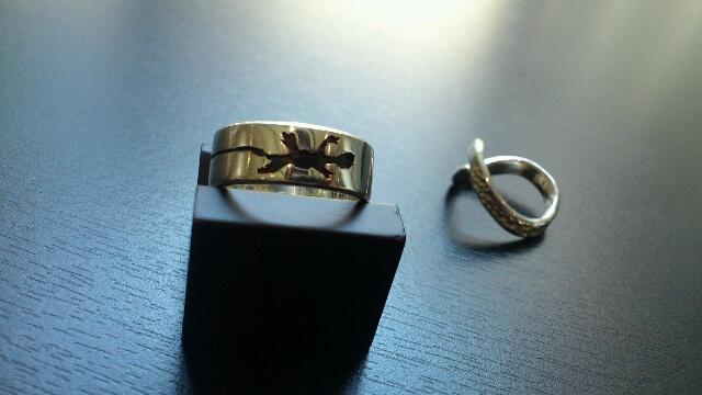 ring ws4
