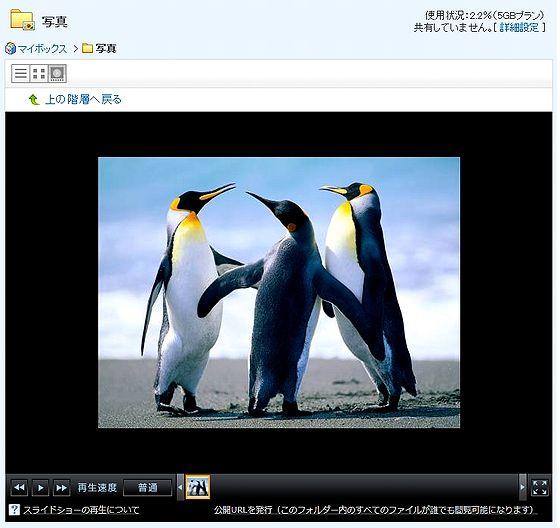 Ybox_Viewer.jpg