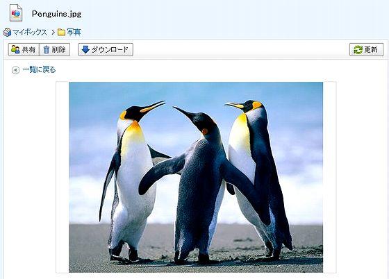 Ybox_filebrowse.jpg