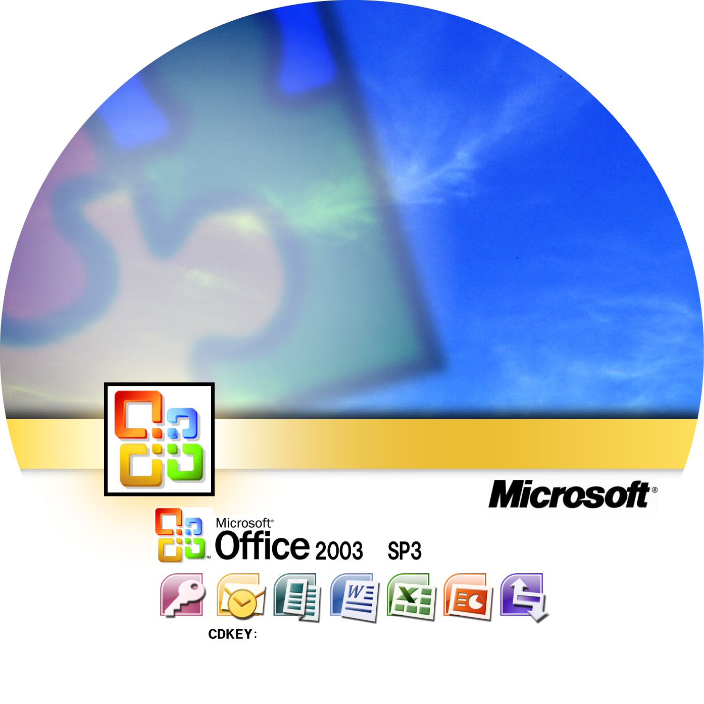 Ms office 2000 professional iso : tremenic
