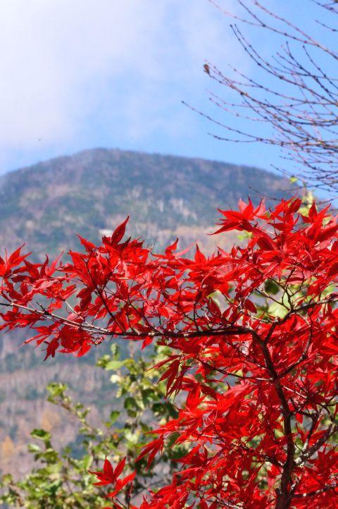 1024_12山と紅葉