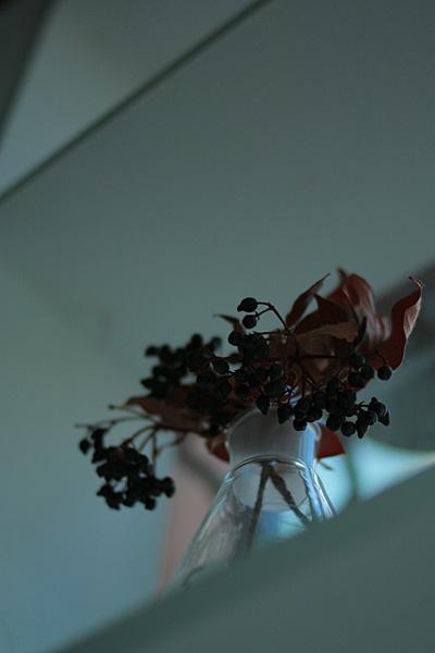 photo132.jpg