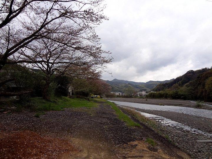 20120422-1.jpg