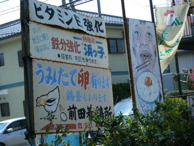 2010_04180003.jpg