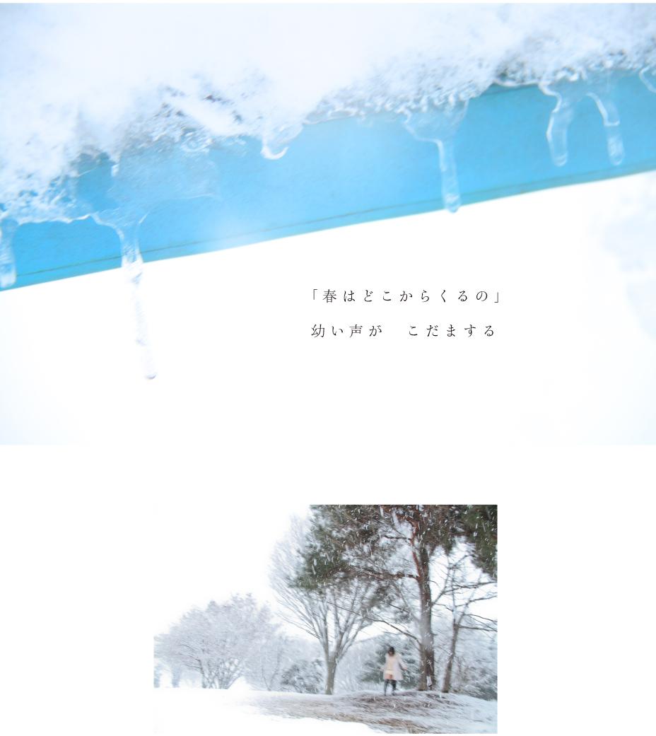 snows001.jpg