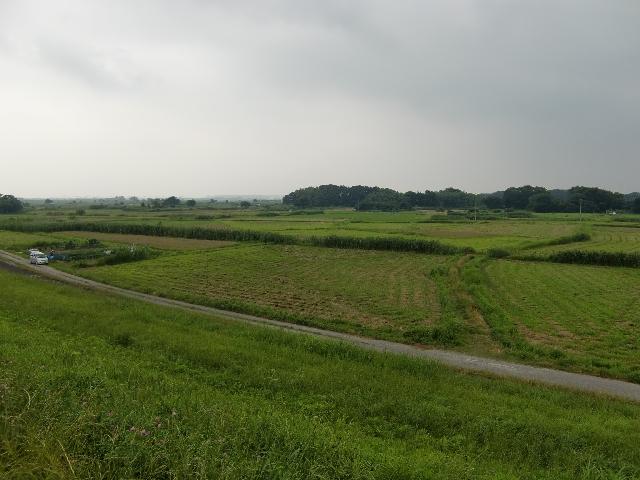 20110707z1.jpg