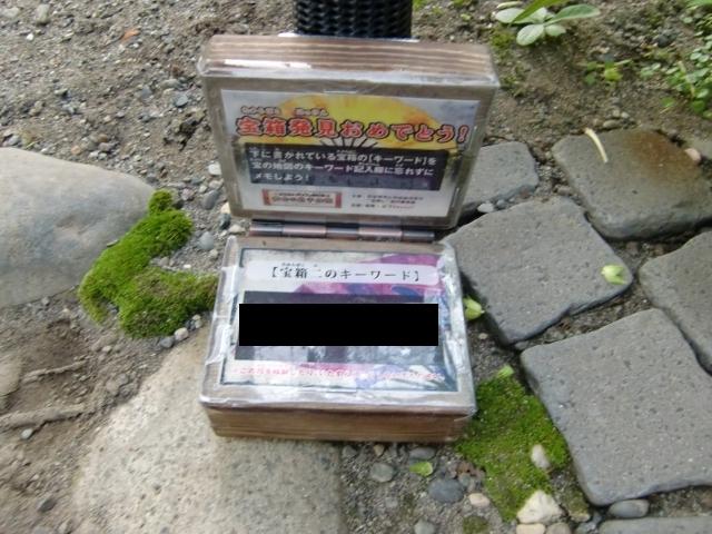 20111013z2x.jpg