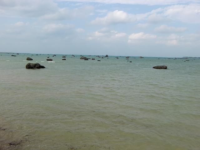 20111120z12.jpg