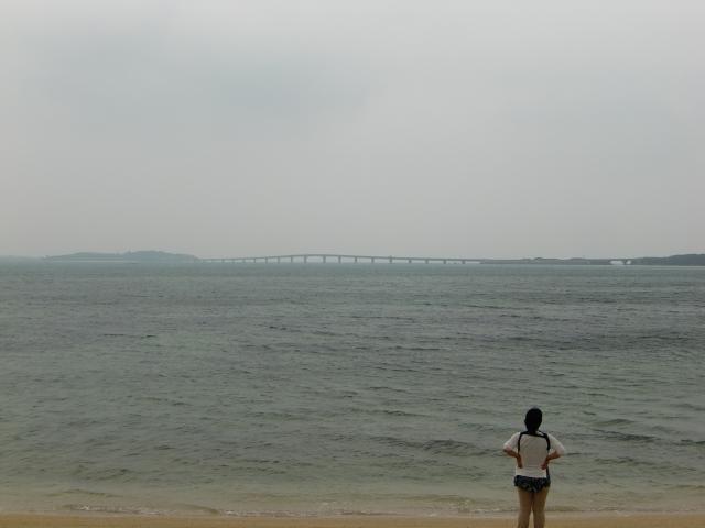 20111124z131.jpg