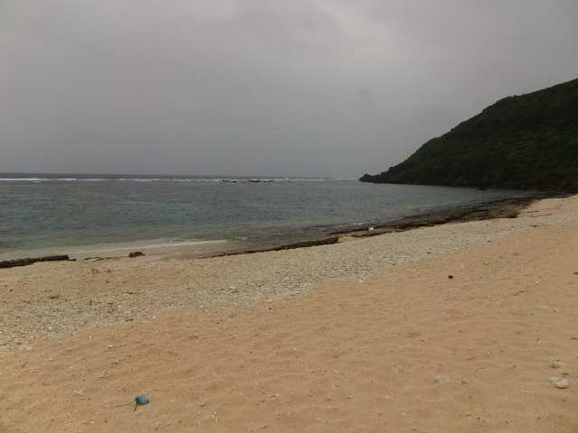 20111124z81.jpg