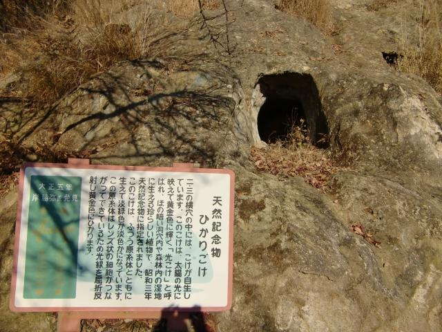 20111215z41.jpg