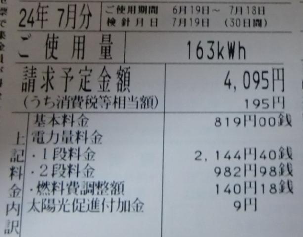 20120725z1.jpg