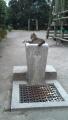 20121012_cat 2_convert
