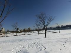 トゥックソム公園の雪