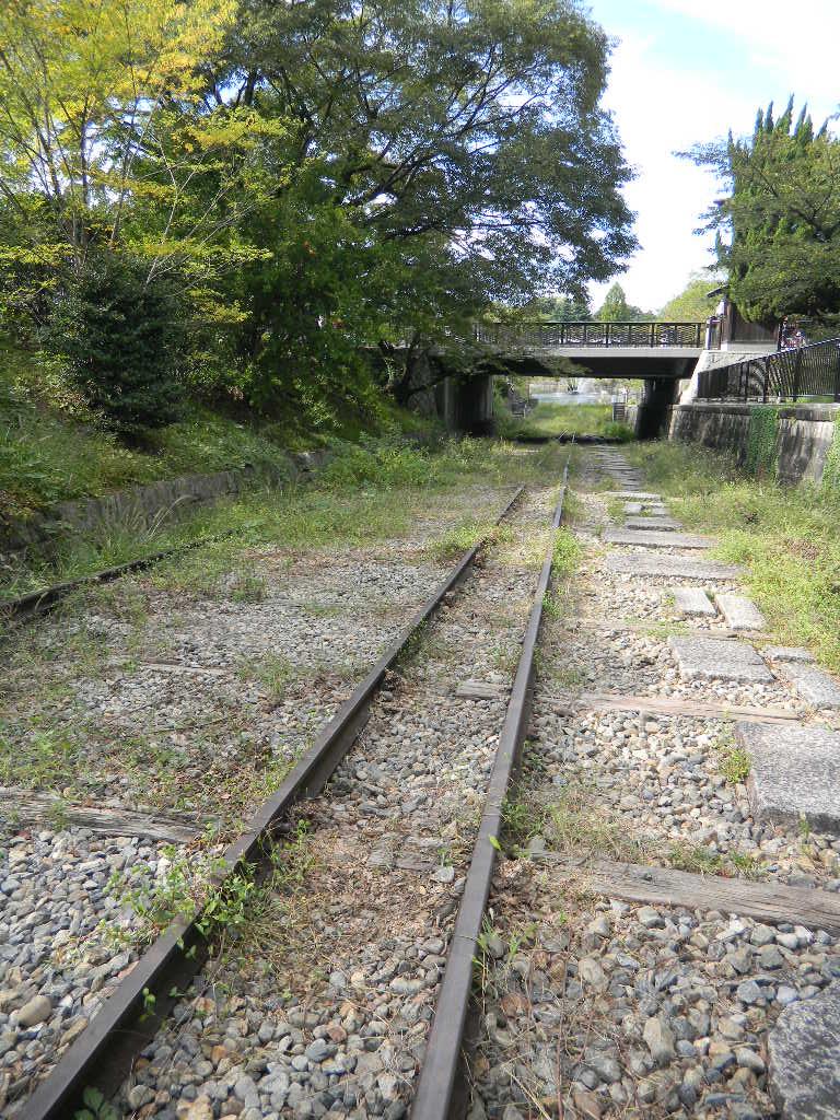 DSCN3135.jpg
