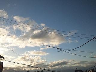 台風一過の青空♪