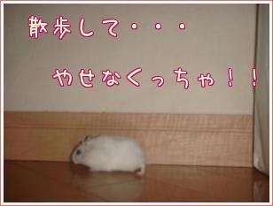 3Sr_9Eq5.jpg
