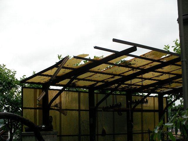 裏の屋根被害②