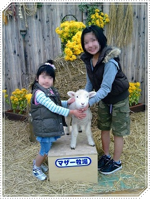 子羊ちゃん