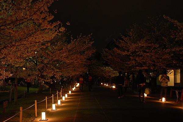 2010040913.jpg