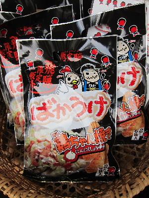 shirakawagou10