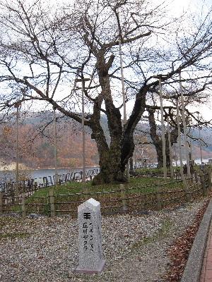 shirakawagou18