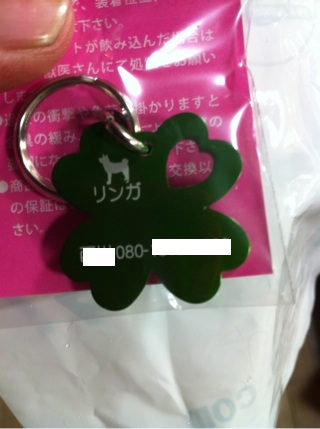 iphone_20110504230353_20110504231153.jpg