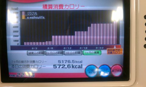 20110931_IMAG0063_R.jpg