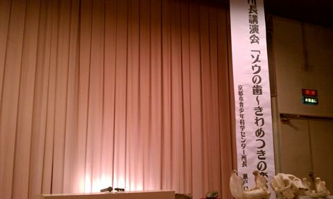 20111113_IMAG0326_R.jpg