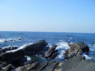 城ケ島の岩