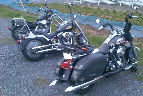 P氏達のバイク