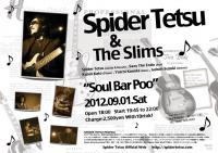 spider_0901.jpg