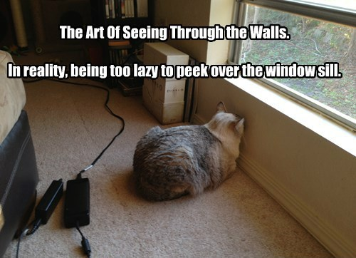 Art of Looking Through Walls