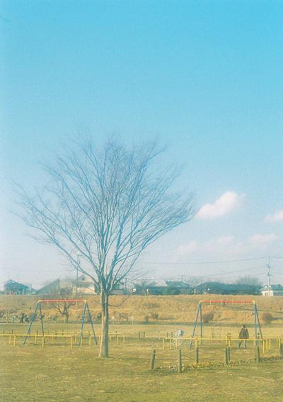 rere枯れ木とブランコ000068