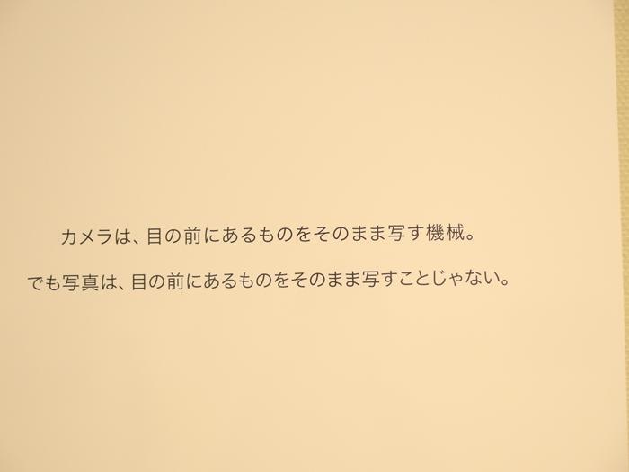 IMGP0038.jpg
