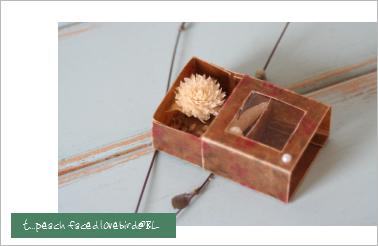 キャラメル小箱5