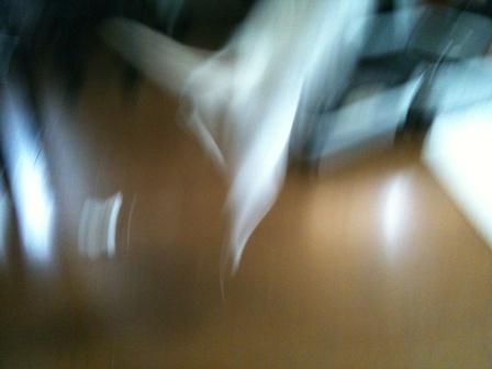 rinas camera 083