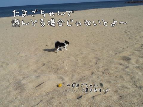 BYzY_.jpg