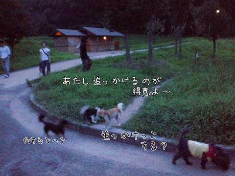 HK4Qg.jpg