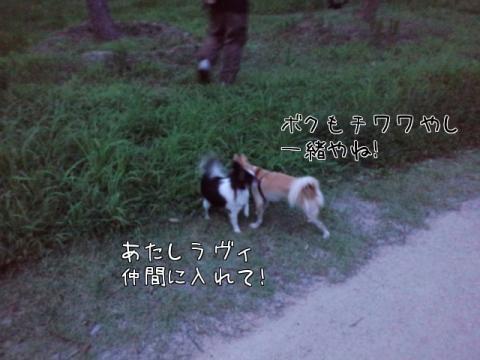HKAQ5.jpg