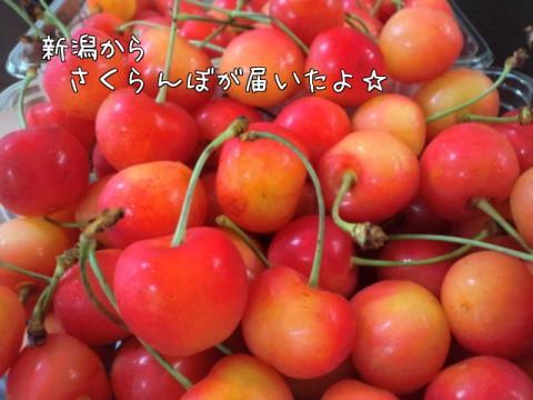 N7aPyhCl.jpg