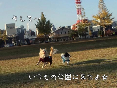 O7FCE.jpg